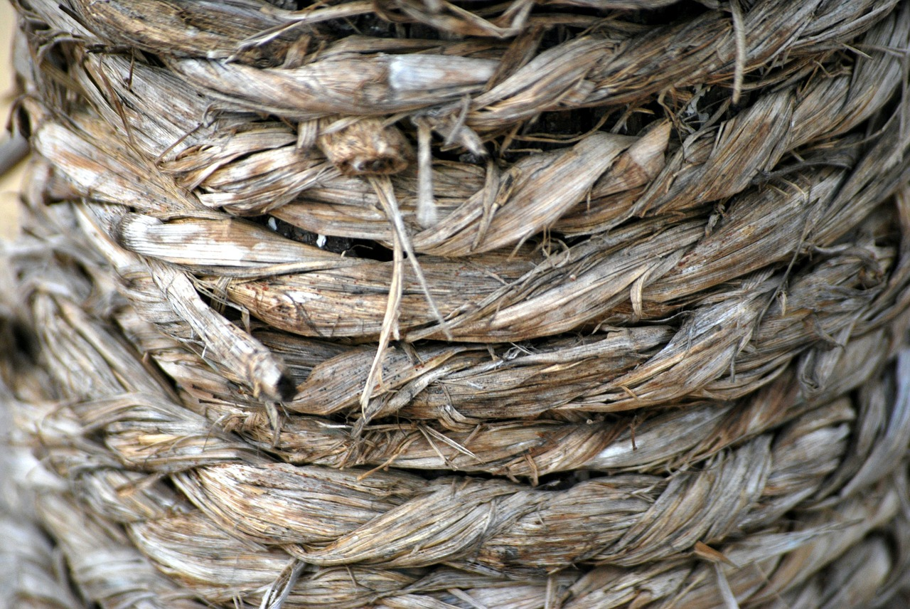 rope 19446 1280 What Is Hemp And Why Is It So Beneficial?
