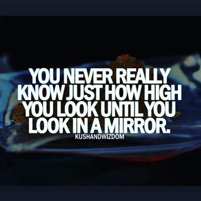 Look In A Mirror 10 Best Weed Memes We Found This Week! (September 6   13)