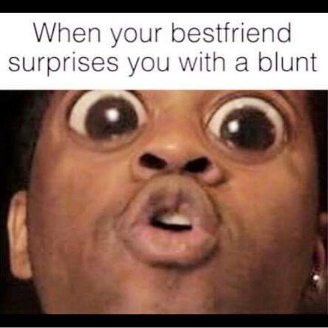 Surprise Blunt 10 Best Weed Memes We Found This Week! (September 6   13)