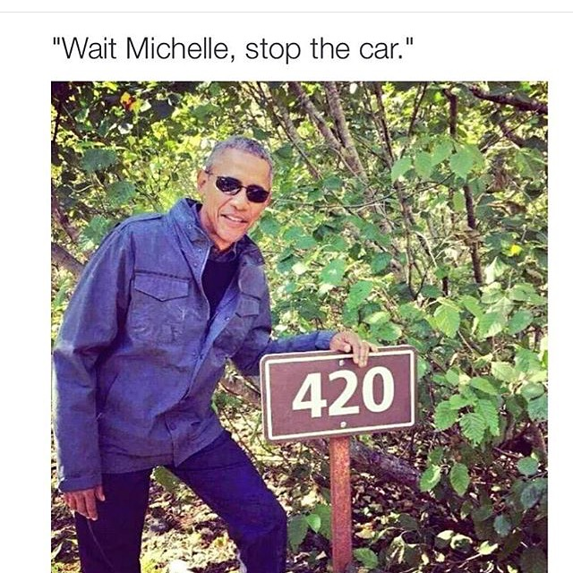 Wait Michelle 10 Best Weed Memes We Found This Week! (September 6   13)