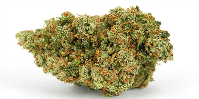 strains for pain 6 The Best Strains of Marijuana For Pain Relief