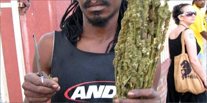 2 1 What a $20 Bag of Weed Looks Like in Jamaica
