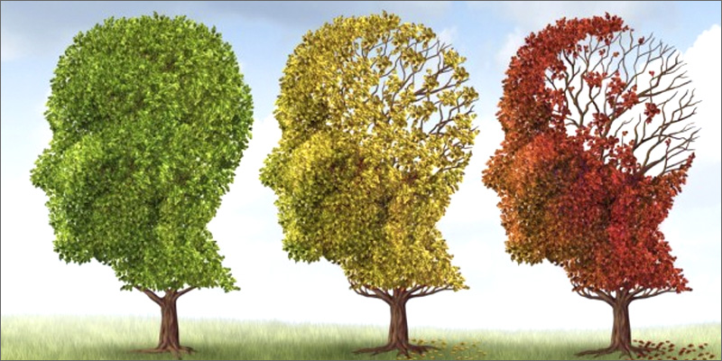alzhymers 5 Common Illnesses You Didn't Know Marijuana Can Cure