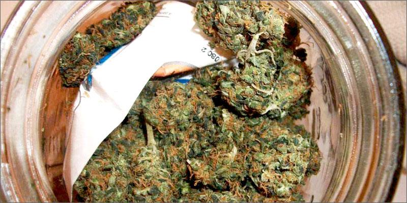 drying sheet How To Grow Marijuana Step 5: Curing & Max Your Bud Hacks!