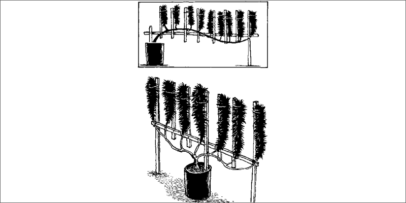 flatweed 1 How To Grow Marijuana Step 5: Curing & Max Your Bud Hacks!