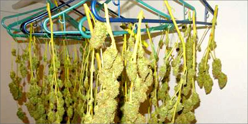 Top 10 Ways To Smoke Weed