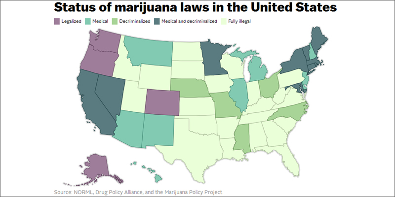Do You Know Your Marijuana Rights In Legal and NonLegal States