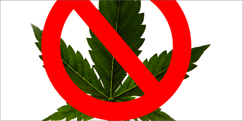 banned Facebook Re Opens Closed Cannabis Pages
