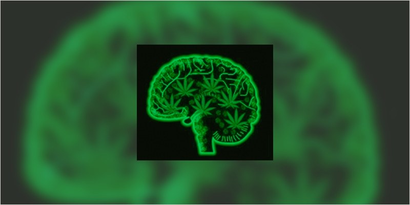cannabis psychosis ci 2 If You Have This Gene You May Need To Be Wary Of Cannabis