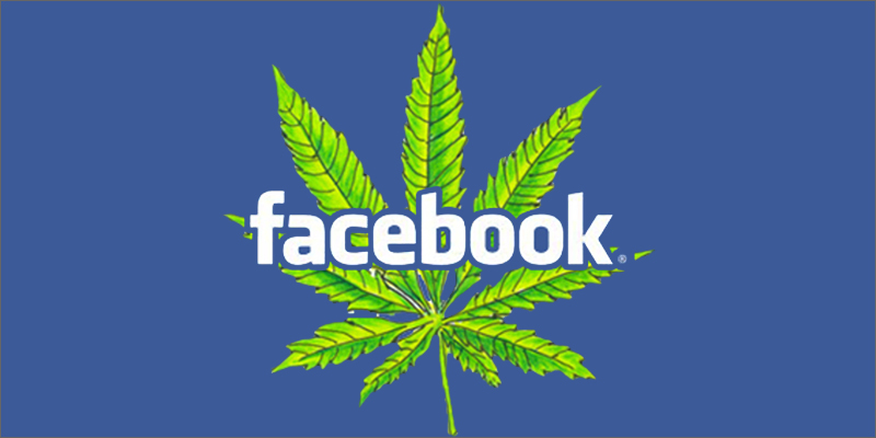 facebook Facebook Re Opens Closed Cannabis Pages