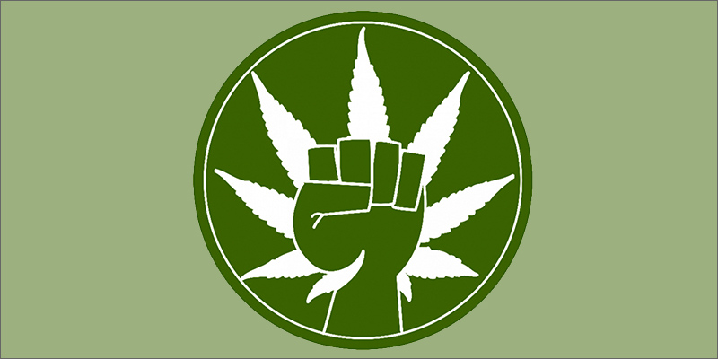 weed power Martyrs For Freedom: The Courageous Patients Striving For Survival
