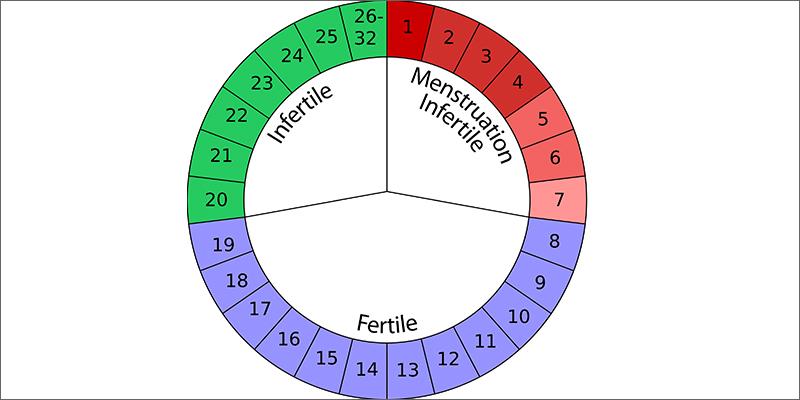 wheel Marijuana And Pregnancy #2: Does Marijuana Have An Impact On Fertility?
