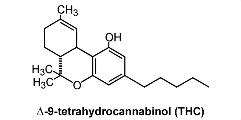 pass drug test thc molecule How To Flush Marijuana Out Of Your System