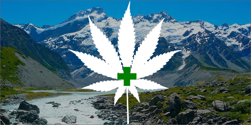 legalization of marijuana in new zealand The current marijuana laws are included in the misuse of drug acts of 1975 in  new zealand and while there are public campaigns often to legalize cannabis.