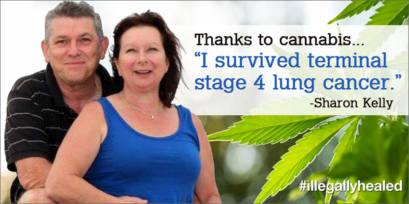 cannabis cures terminal stage iv lung cancer testimonial Miracle Cannabis Saved Her From Terminal Stage IV Lung Cancer
