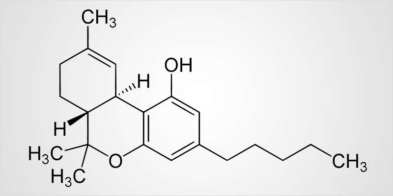 Thc Everything You Need To Know About Delta9 Tetrahydrocannabinol