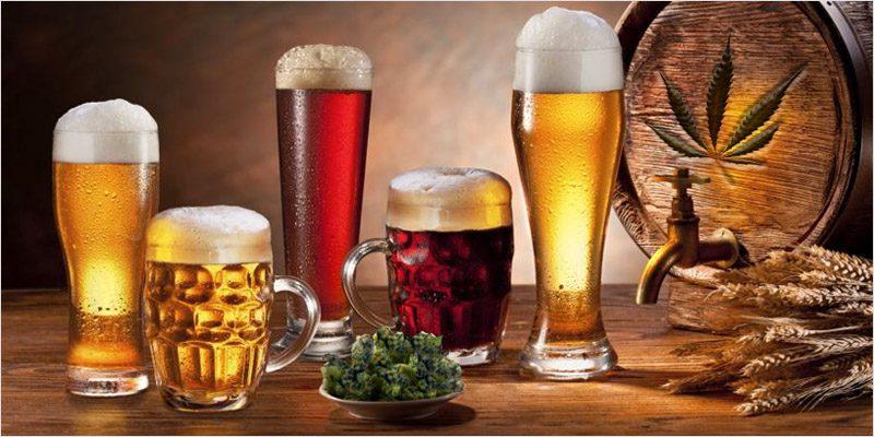 terpene-infused-beer