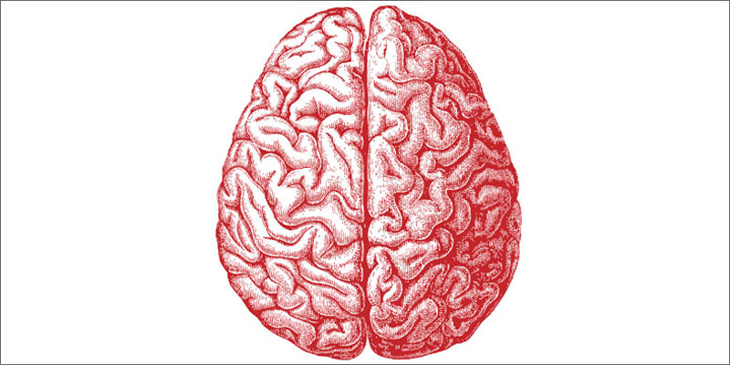 cannabis and parkinsons brain Does Cannabis Help Parkinsons Disease?