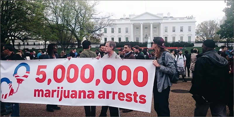 8 david bienenstock cannabis capitalism arrests David Bienenstock: Cannabis Should Transform Capitalism