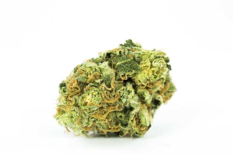 Strawberry Cough 11 These are the best weed strains on the planet right now