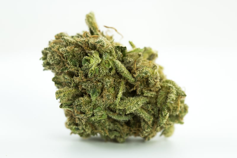 White Russian 1 The 10 best weed gifts for your girlfriend