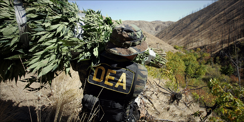 Denver Law Firm 1 Cannabis Industry Plans To Sue DEA Over New CBD Classification