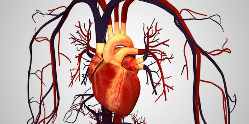 What Does Weed 1 What Does Cannabis Do To Your Heart?