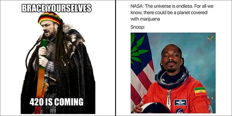 50memes 800x400 50 hilarious weed memes that will keep you laughing for hours