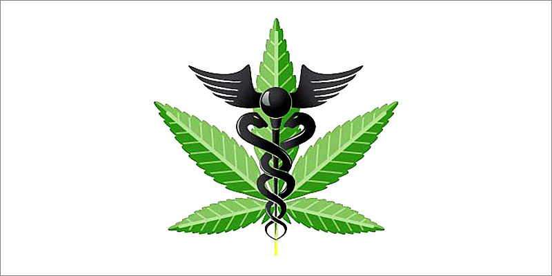 7 Cool Facts 1 7 Cool Facts About Cannabis And The Endocannabinoid System