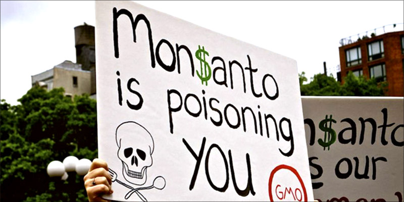 Big Corporations Push 1 Big Corporations Pushing For Genetically Modified Weed Industry