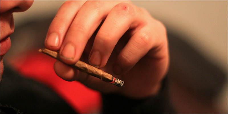 Does Smoking Cannabis 5 UN Just Called For Worldwide Drug Decriminalization