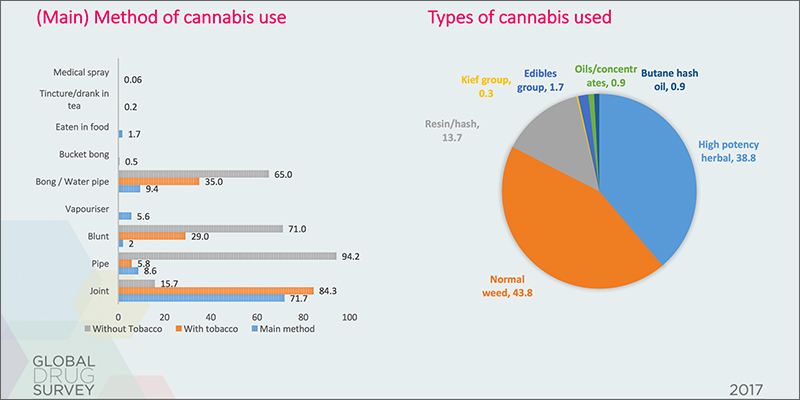 surevey The Global Drugs Survey Reveals How The World Gets Stoned