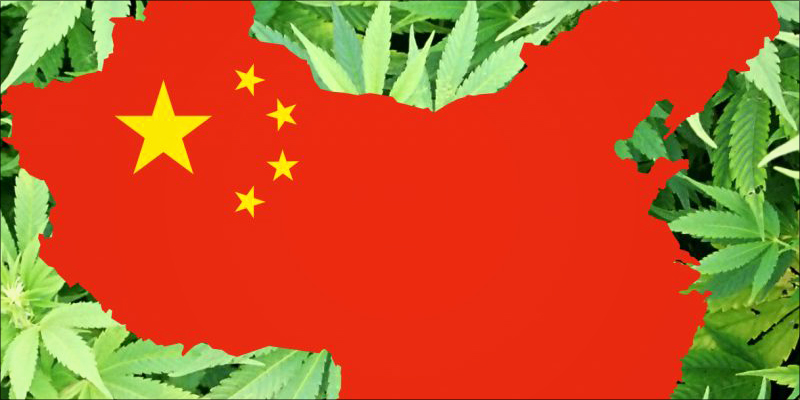 China Has Quietly 3 China Has Quietly Grown Into A Cannabis Superpower