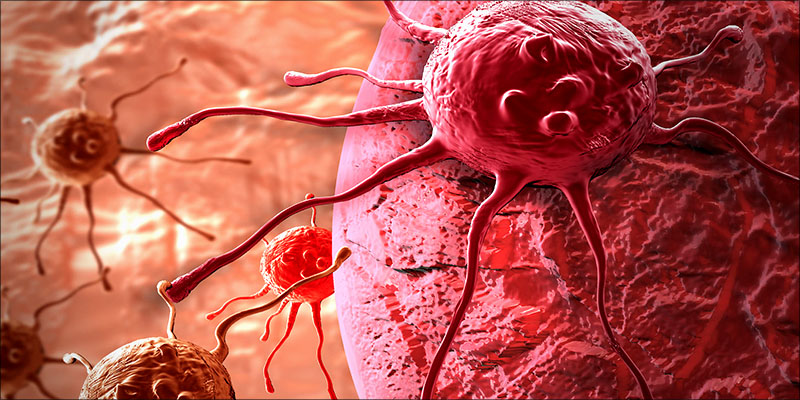 Over 100 Peer 4 Over 100 Peer Reviewed Studies Confirm Cannabis Kills Cancer Cells