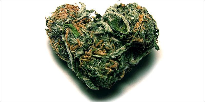 Study On Marijuana 5 New Study On Cannabis And Heart Health Has Sparked Debate