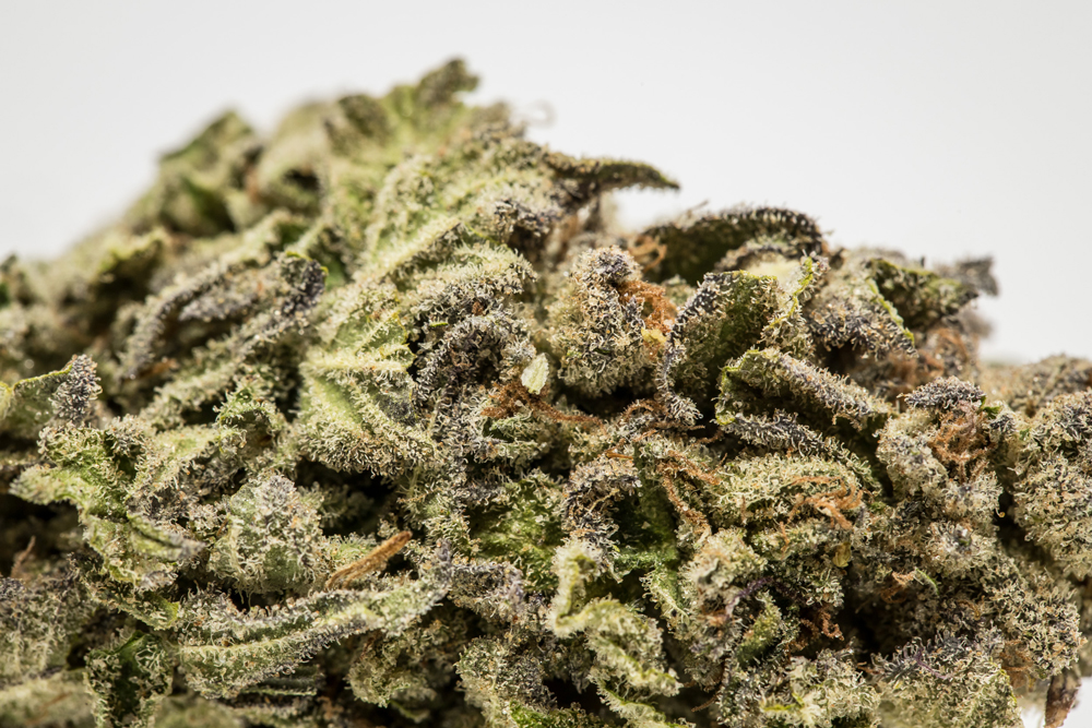 Candy Skunk The ten worst weed strain names