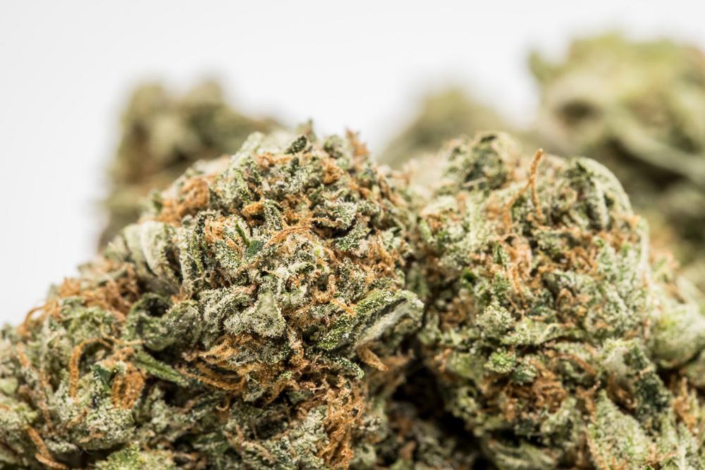 The Hulk  The ten worst weed strain names
