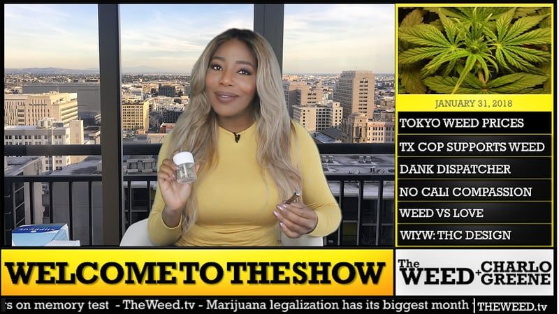 The Weed Show We talked with the news anchor who quit on live TV to fight for legal pot