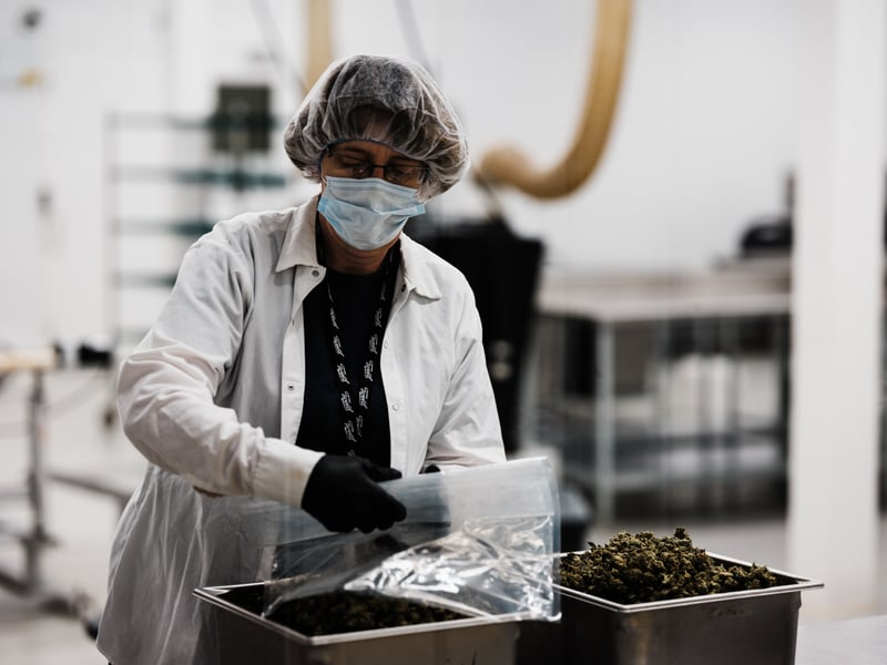 DSCF2360 Canopy Growth Donates $2.5 million to Cannabis for Opioid Addiction Research