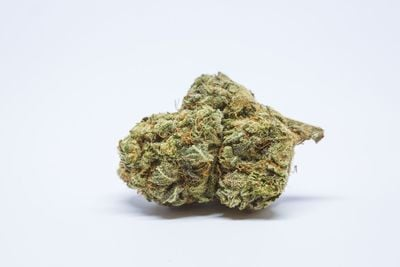Purple Princess Weed; Purple Princess Cannabis Strain; Purple Princess Hybrid Marijuana Strain