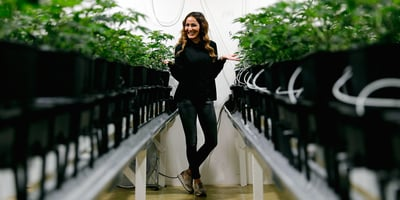 The 10 Best Cannabis Jobs You Probably Haven't Considered