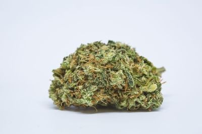 Head Cheese Weed; Head Cheese Cannabis Strain; Head Cheese Hybrid Marijuana Strain
