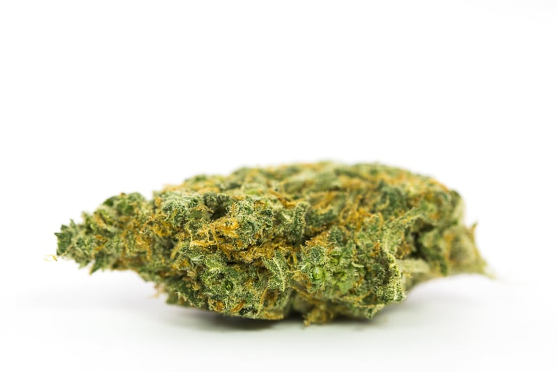 Harlequin1 10 Best Strains to Serve at Your Weed Wedding