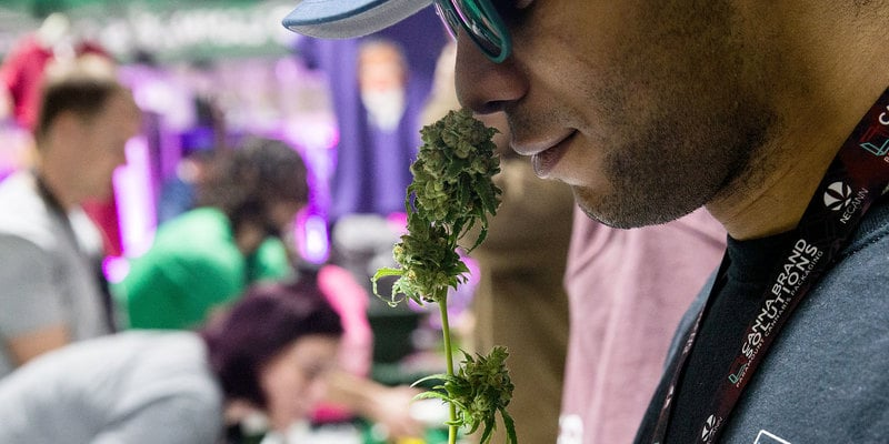 Massachusetts Pot Shops To Open On July 1. But There Won't Be Many Of Them.