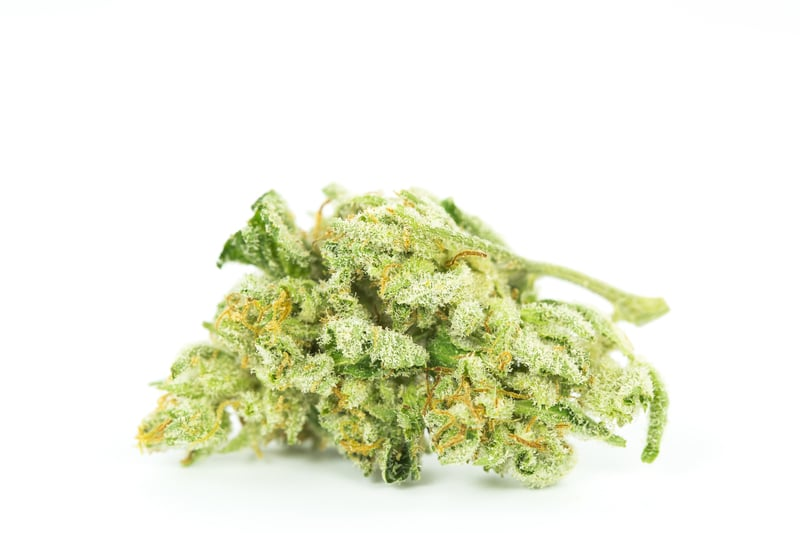 Wedding Cake 1 10 Best Strains to Serve at Your Weed Wedding