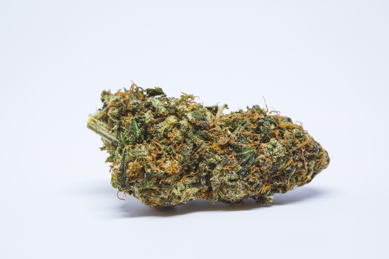 Сорта марихуаны для гашиша где купить марихуану семена