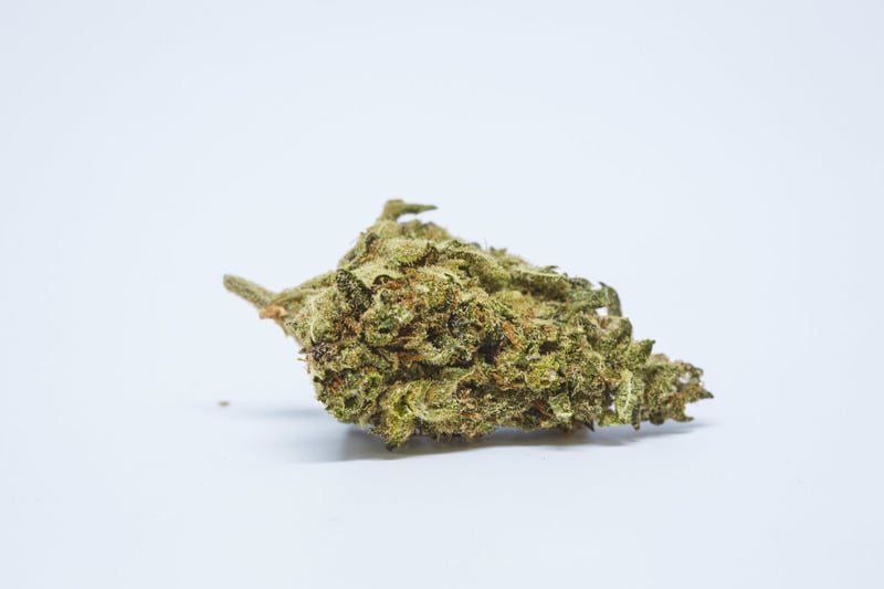 Golden Goat Which Weed Is The Best For Hanging Out With Friends This Summer?