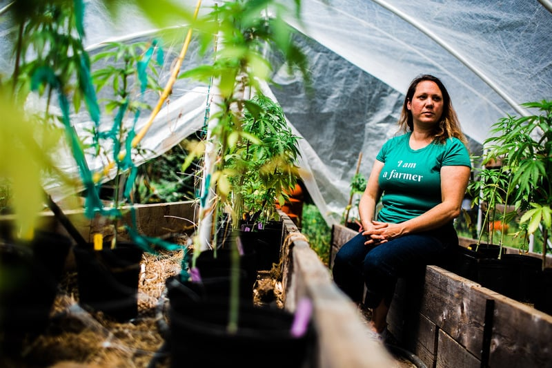 Humbolt County Cannabis Farmers 1 of 7 These Cannabis Pioneers Fear Legalization Will Leave Them Behind